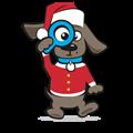 Kerstkleding hond