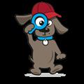 Hondenpet