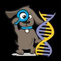 DNA test hond