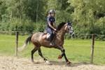 Leuk en leerzaam trainingskamp met eigen pony!