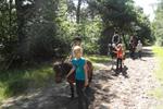 Ponykamp in de Veluwse Bossen