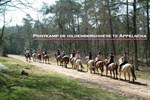 Ponykamp Hildenberghoeve