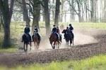 Ponydagkampen, buitenritten en meer