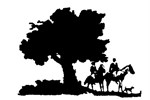 Het gezelligste ponykamp is in Holten
