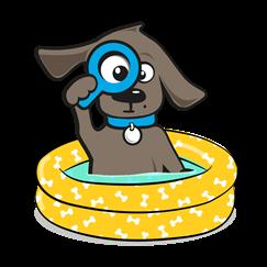 Hondenbot zwembad