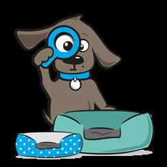 Hondenmand chihuahua