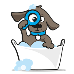 Paracetamol hond