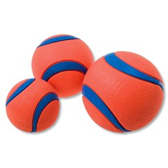 Hondenballen