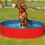 Doggy-Pool