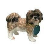 Beeldje schoothondje Shih Tzu bruin/wit 11 cm - Honden beeld