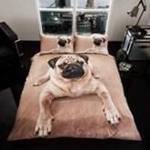 Mopshond, Pug Dog 2 persoons dekbedovertrek 200 x 200 centimeter