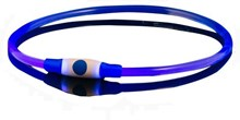 Bee Seen - Dog Band - Blauw - usb - Led Band - honden lampje - veiligheid