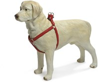 Beeztees - Borsttuig Hond - MacLeather - Rood - S - 35-60 cm